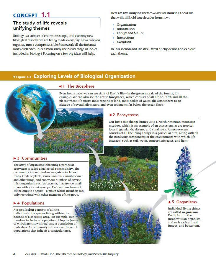 Campbell biology 11th edition ebook ebook zone campbell biology 11th edition ebook fandeluxe Images